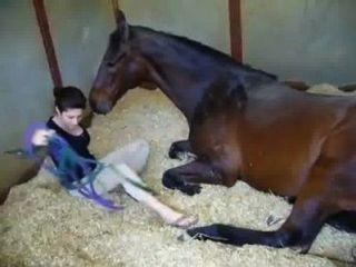 الفتاة والحصان sex stories.xxx