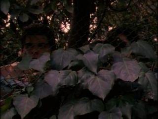 فيلم كامل بيكيني المدرسة المرورية (1997)