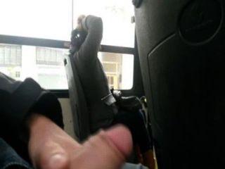 mostrando ميل pene أون شرم حافلة