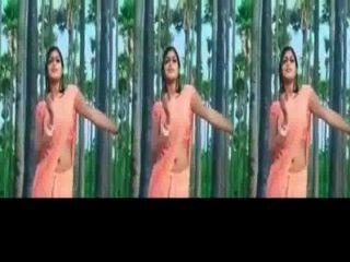 ولاية كيرالا فتاة meghana راج يهز الحمار الساخنة وإظهار السرة في ساري الرطب