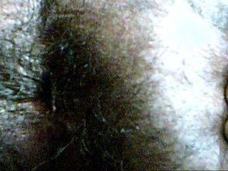 الشعر الهندي الحمار كلوسيوب