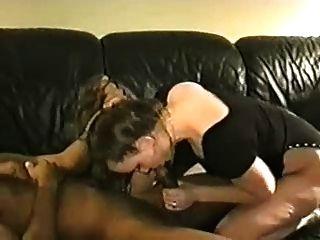 زوجة بيضاء دسم يحصل على فطيرة منها بي بي سي حبيب