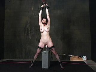 عبودية وآلات سخيف (براندي) 15