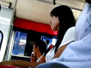 حافلة dickflash