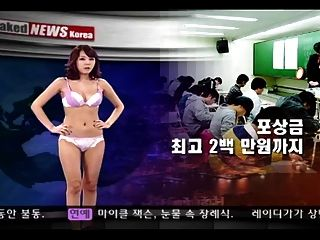 المجردة أنباء كوريا 08 07 2009