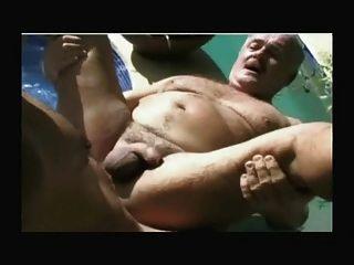 الدب بابا