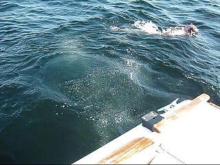 فيديو قارب حقيقي