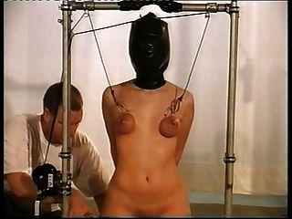 حلمة الثدي والعضو التناسلي النسوي التعذيب