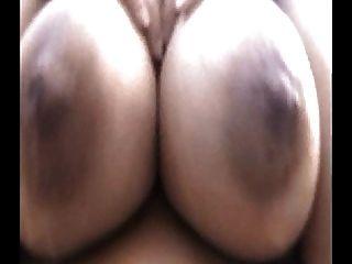 بلدي حليب الثدي