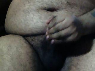 الدب بطن كبير وحده في المكتب