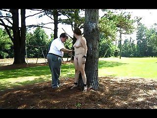 تعادل نيفا إلى شجرة في الفناء الخلفي