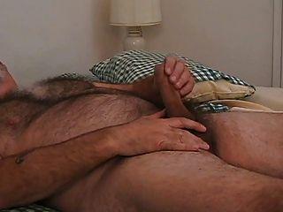 حقا الساخنة بابا منفردا الدب