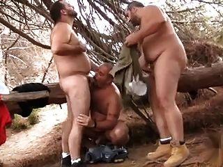 شعر يحمل 3some في الغابة
