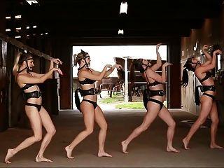 الرقص ponygirl