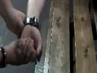 هيشيكر هرب ملزمة تعذيب