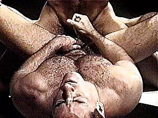 مصارعة الدببة مثلي الجنس