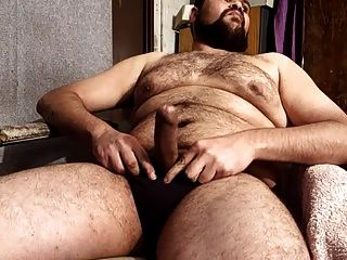 السمين الدب استمناء حتى القذف