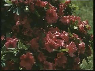 الكلاسيكية البريطانية وقحة لويز يحصل مارس الجنس في الحديقة