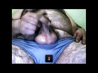 الكمال الدب كومينغ