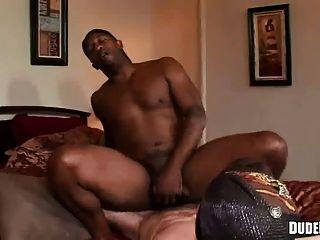 الرجل الأسود يحب أن يشعر الديك الثابت في الحمار