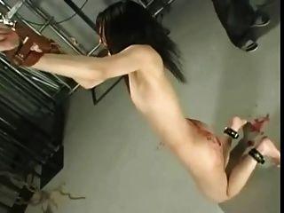 جلد، أول، ياباني