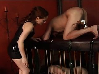 الرجل يحصل كرات و الديك التعذيب من دوميناتريكس