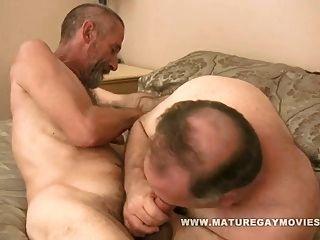 ريان سيلفيردادي يحصل مارس الجنس بواسطة نحيف صديق
