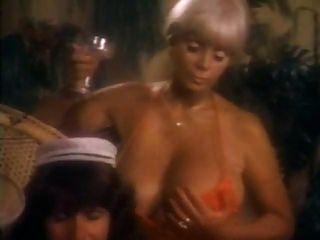 مثير السيدات اللعب حولها والحصول على مارس الجنس في البرية خمر الثلاثي