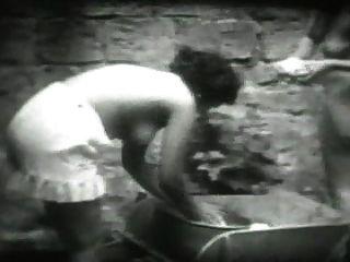 خمر فيد 16