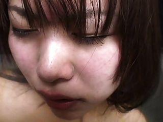 اليابانية كاتسويت اللاتكس 66
