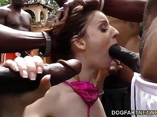 ستيلا كوكس تمتص الديوك السوداء ويحصل على الوجه