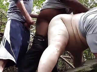 أسود يأخذني في الغابة