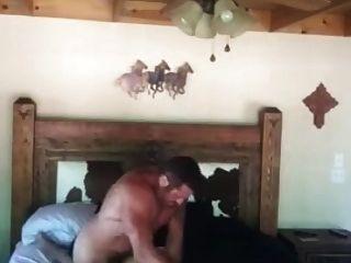 اللفظي الأبيض رعاة البقر يولد الأسود جوك الكلبة